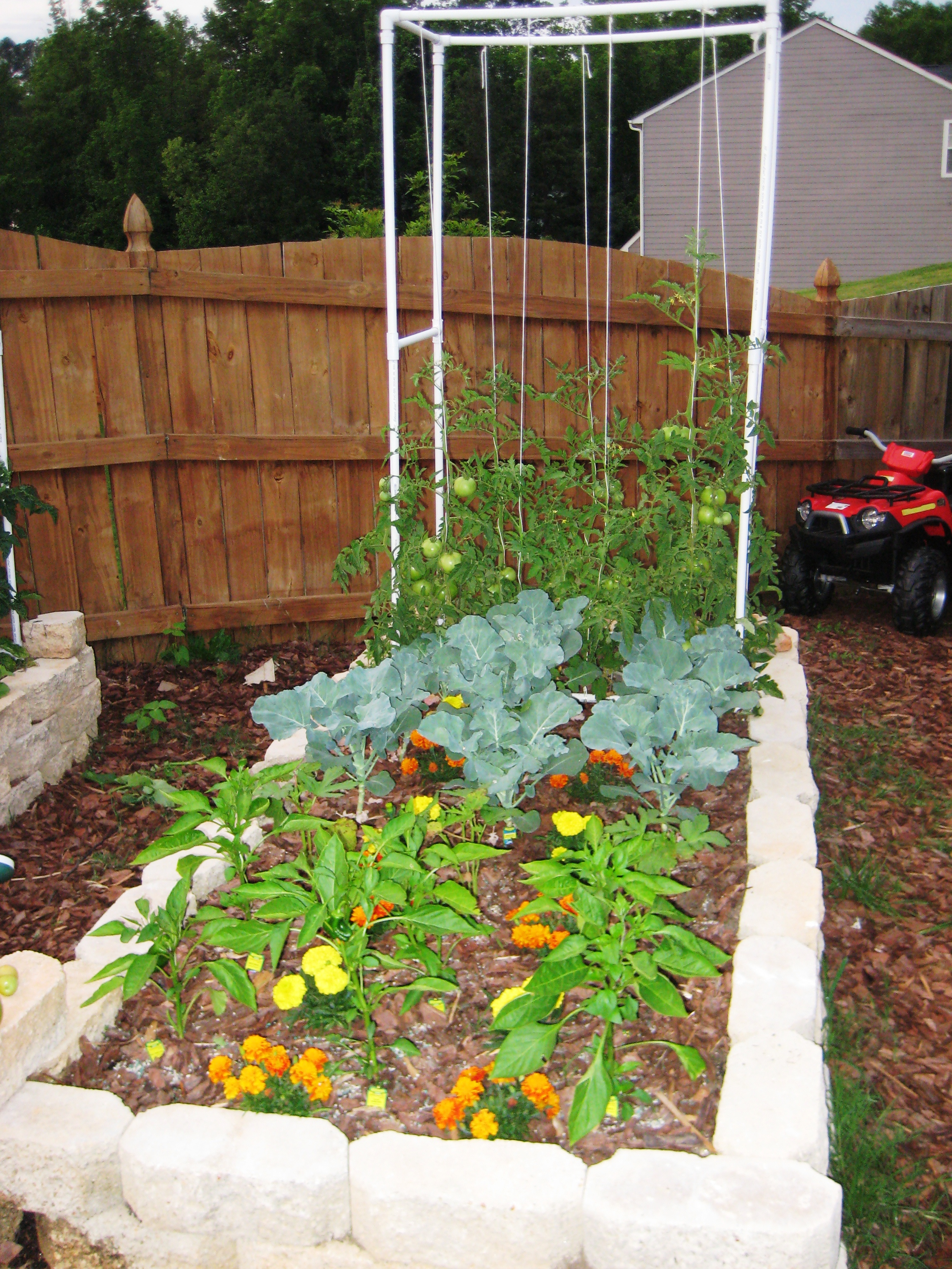 Georgia Garden: Square Foot Gardening In Georgia