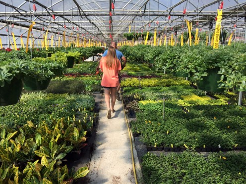 Mannah looking for just the right plants for her ornamental container garden
