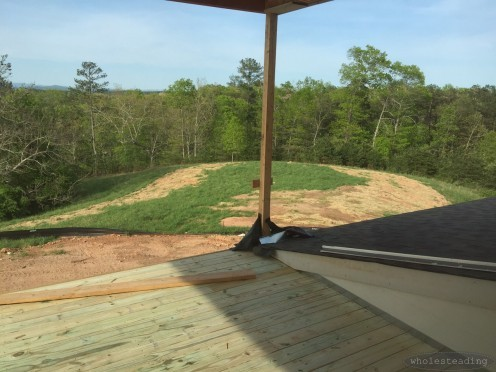View from the rear porch (the horseshoe shaped dead grass is where the septic drain field was installed)