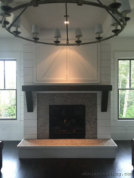 2015-09-22-Wholesteading-com-Direct_Vent_Fireplace-02