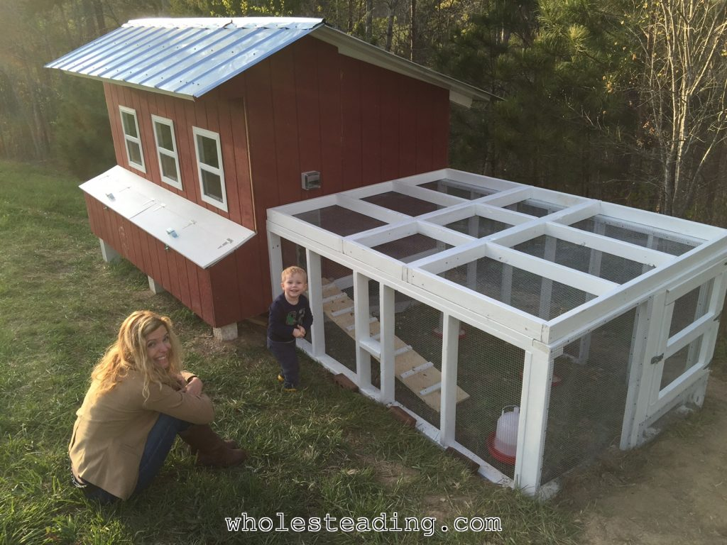 Wholesteading-com_Chicken_Coop_08